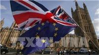 EU đẩy mạnh kế hoạch Brexit không thỏa thuận