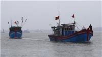 Bốn thuyền viên mê man, nguy kịch khi chui xuống hầm cá