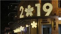Hà Nội: Tổ chức chấm điểm trang trí đường phố chào mừng Tết Nguyên đán Kỷ Hợi