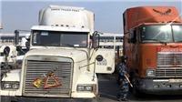 Lại phát hiện 2 tài xế container tại cảng Cát Lái dương tính với ma túy