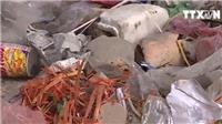 Cận Tết, Hà Nội loay hoay với bài toán rác thải