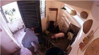 Chuyện nuôi lợn thời bao cấp