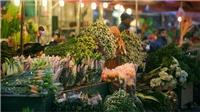 Theo chân nhóm Ký họa đô thị Hà Nội về làng hoa, chợ Tết