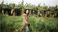 Đạo diễn Nguyễn Hoàng Điệp: Từ bó mùi già ngày Tết đến 'Ơ kìa Hà Nội'
