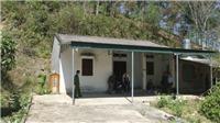 Công an tỉnh Điện Biên thông tin chính thức vụ nữ sinh đi giao gà bị sát hại