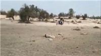 CẬP NHẬT Căng thẳng Ấn Độ - Pakistan: Ấn Độ bắn hạ máy bay quân sự không người lái Pakistan