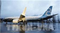Vụ tai nạn máy bay Ethiopia: Đức cấm  máy bay Boeing 737 MAX 8 và 9