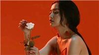 Giải Âm nhạc Cống hiến lần 14-2019 - Hạng mục Music Video của năm: Nhiều sắc màu độc đáo
