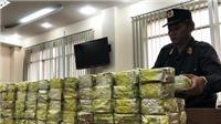 Những vụ án ma túy lớn bị phát hiện, bắt giữ gần đây