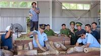 Khẩn trương điều tra mở rộng vụ án vận chuyển ngà voi từ nước ngoài vào Việt Nam