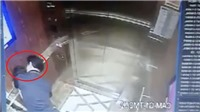 Vụ bé gái bị sàm sỡ trong thang máy: Viện Kiểm sát tham gia điều tra
