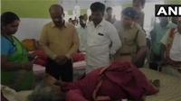 Ít nhất 7 người chết, 10 người bị thương trong một vụ xô đẩy tại Ấn Độ