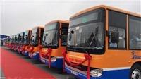 Sẽ mở thêm tuyến buýt chất lượng cao Hà Đông - sân bay Nội Bài