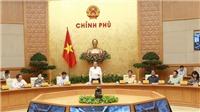 Phó Thủ tướng Trương Hòa Bình: Xem xét trách nhiệm cơ sở cấp giấy phép lái xe khi xảy ra tai nạn