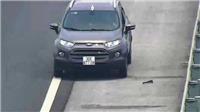 Đi ngược chiều trên cao tốc, lái xe bị tước giấy phép 5 tháng, phạt 7,5 triệu đồng