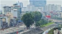 Hà Nội dự kiến di dời gần 2.000 cây xanh