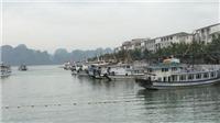 Du lịch Việt Nam: Hiệu quả mô hình 'xe bus' trên vịnh Hạ Long