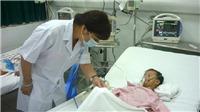 Hà Nội ghi nhận bệnh nhân viêm não Nhật Bản đầu tiên trong năm