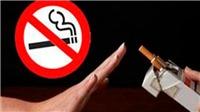 Quẩn quanh thuốc lá
