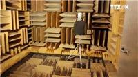 VIDEO: Căn phòng tĩnh lặng nhất thế giới có thể khiến con người 'hóa điên'