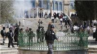 Đụng độ giữa người Palestine và cảnh sát Israel tại thánh địa Jerusalem, hàng chục người bị thương