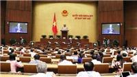 Kỳ họp thứ 7, Quốc hội khóa XIV: Nhiều vấn đề 'nóng' của ngành xây dựng được chất vấn