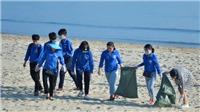 Đà Nẵng ra quân hưởng ứng chiến dịch 'Hãy làm sạch biển 2019'