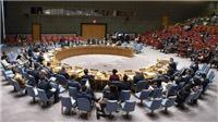 Việt Nam lần thứ hai trúng cử làm Ủy viên không thường trực Hội đồng Bảo an Liên hợp quốc