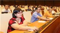 Kỳ họp thứ 7, Quốc hội khóa XIV: Thông qua Luật Kiến trúc