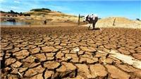 TIÊU ĐIỂM TRONG NGÀY: Phát triển tương lai từ 'nền đất chết'
