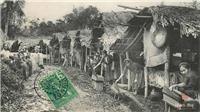 Ký ức Thăng Long - Hà Nội (Kỳ 2): Vệ sinh môi trường - bài toán ngàn năm