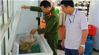 Hà Nội triển khai hệ thống cảnh báo nhanh an toàn vệ sinh thực phẩm