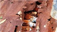 Phát hiện hầm đạn cối 60mm dưới chân đèo Bảo Lộc, Lâm Đồng