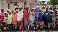 Hơn 800 triệu người đói ăn, LHQ cảnh báo tình trạng đói nghèo gia tăng