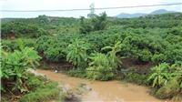 Bắc Giang tích cực khắc phục úng ngập do mưa lũ