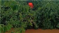Giải cứu hai người mắc kẹt trên cây điều giữa dòng nước lũ chảy xiết