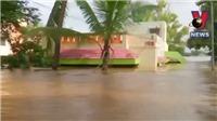 Ấn Độ: Hơn 200 người thiệt mạng do lũ lụt