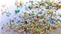 WHO kêu gọi đánh giá thêm về hạt nhựa siêu nhỏ