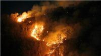 Paraguay và Bolivia nỗ lực ngăn chặn các đám cháy rừng Amazon