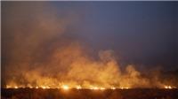 Cháy rừng Amazon tại Brazil tiếp tục lan rộng