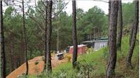 Nhiều căn nhà không phép 'mọc' giữa rừng thông Đà Lạt