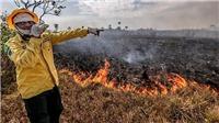 Bắt giữ và xử nghiêm 63 đối tượng gây cháy rừng Amazon