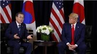 Hàn Quốc thông tin về triển vọng nối lại đàm phán hạt nhân Mỹ-Triều Tiên