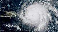 Siêu bão Hagibis xa Bán đảo Triều Tiên, hướng đến thủ đô Tokyo của Nhật Bản