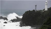Vụ chìm tàu Panama: Chưa có thông tin về số phận thủy thủ Nguyễn Văn Trì