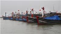 Phú Yên chủ động ứng phó với áp thấp nhiệt đới, bão trên Biển Đông
