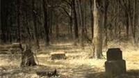 Truyện cười: Nghĩa địa kỳ quái