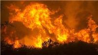 VIDEO: Cháy rừng tại Mỹ đã lan sang Mexico, hàng chục nghìn người sơ tán
