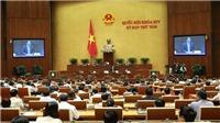 Kỳ họp thứ 8, Quốc hội khóa XIV: 'Tàu 67' làm 'nóng' nghị trường Quốc hội