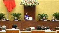 Kỳ họp thứ 8, Quốc hội khóa XIV: Khẩn trương ban hành quy định cụ thể về hàng hóa xuất xứ Việt Nam